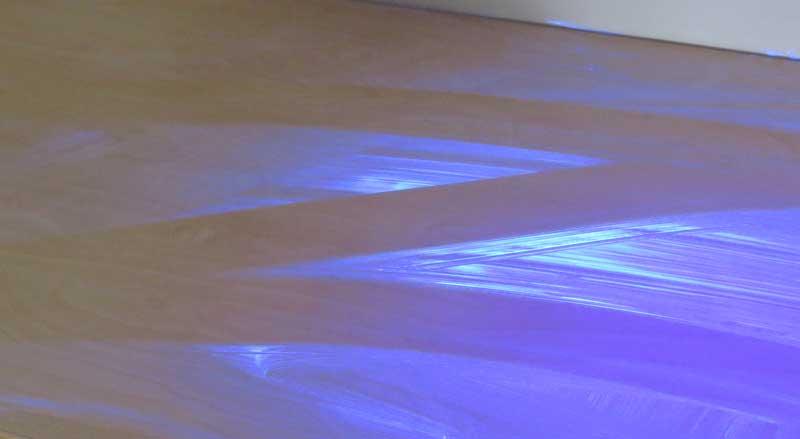 Glitterbug-cleaning-audit4