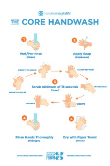 Hand Washing Poster 15