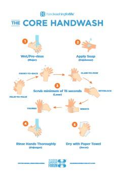Hand Washing Poster 15